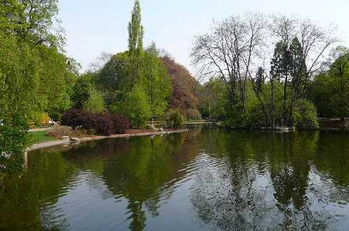 市立公園 池